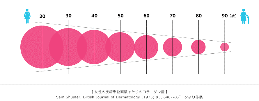 年齢を経るごとに体内のコラーゲンの量が減ることを示しています