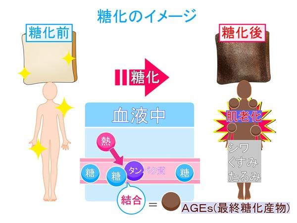 糖とタンパク質が結びついて糖化が起こると身体が茶色いくすみができる